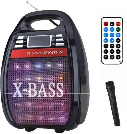 Беспроводная Bluetooth колонка X-BASS Golon RX-810BT со светомузыкой и микрофоном